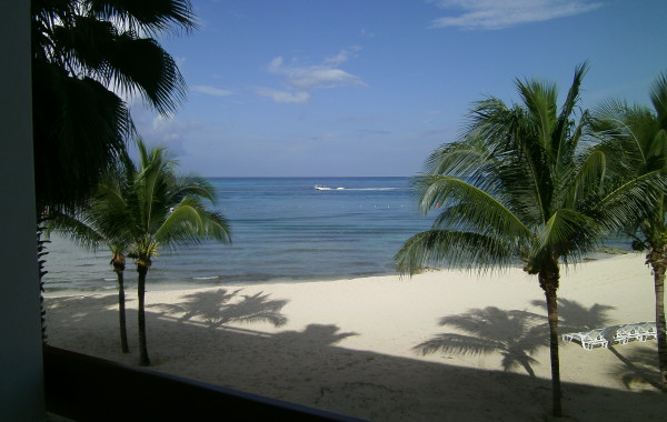 View from Condo – day